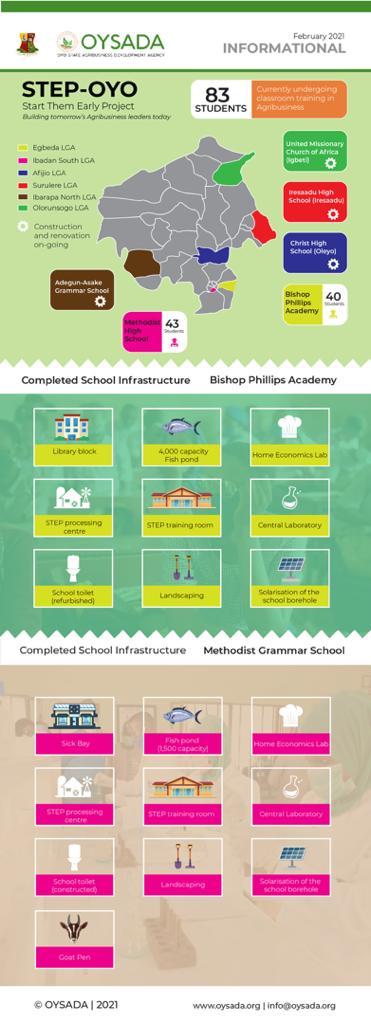OYSADA Infographics